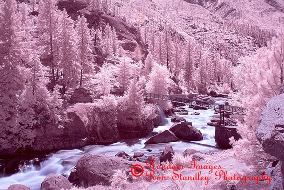 Icicle Creek infrared nature photograph printable art