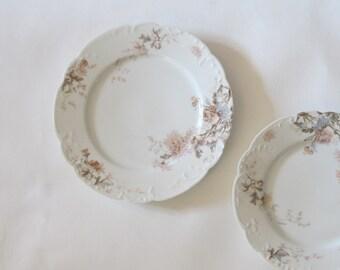 Haviland chrysanthemum Limoges porcelain dinner plate