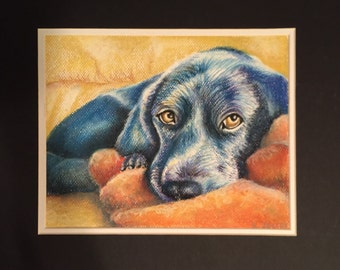 "Custom pet portrait 5""x7"" chalk pastel original artwork"