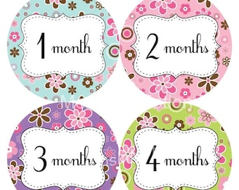 Baby Month Stickers Baby Monthly Stickers Girl Monthly Bodysuit Stickers Baby Shower Gift Photo Prop Baby Milestone Sticker 210