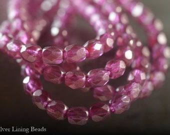 NEW! Fuchsia Bits (50) - Czech Glass Bead - 4mm - Faceted Round