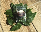 "B.P. Farms - Fresh Bay Leaves ""Refill Packet"""