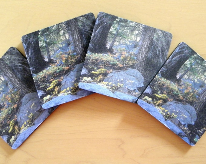 WOODLAND FOREST Coaster Set from Pam's Fab Photos, Yellow-Gold Dining Accessory, Home, Dorm, Cubicle or Office Decor, 4-piece set, Gift Idea