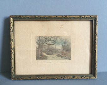 Antique Framed Hand Colored Photograph - Early Blossoms