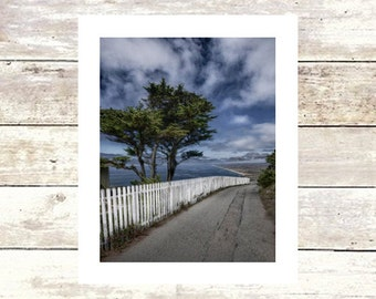 WALKING THE COAST - Bay Area - Pt,Reyes - Fine Art Photograph - Limited Edition of  250