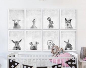 Eight Baby Animal Prints Woodland Nursery Art Girls Nursery Room Decor Animal Portraits Animal Photography Nursery Prints Kids Room Art