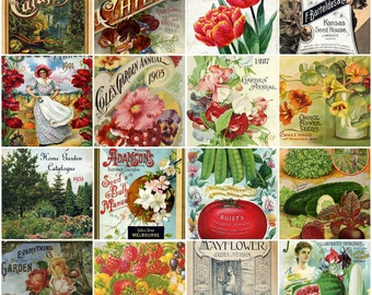 50 Vintage Seed & Catalog Cover Images Digital Pack 3