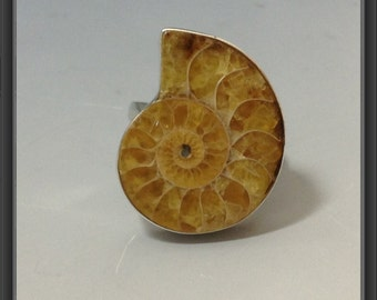 Ammonite ring/ one size- adjustable!