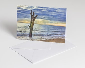 Lonely tree - Greetings card