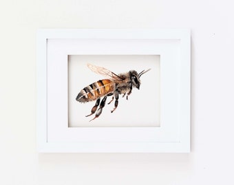 Matted 11x14 Watercolor Honey Bee Print