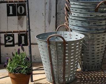 French Zinc Olive or Grape Buckets - Garden Planter