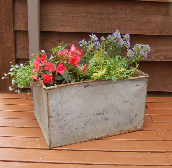 Kitchen Garden Box With Wire Top: Large Galvanized Storage Box Vintage Galvanized Garden Box