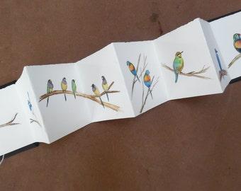 Art book. Concertina . Deckle edged paper. Watercolour bird sketches. Australian bird art.
