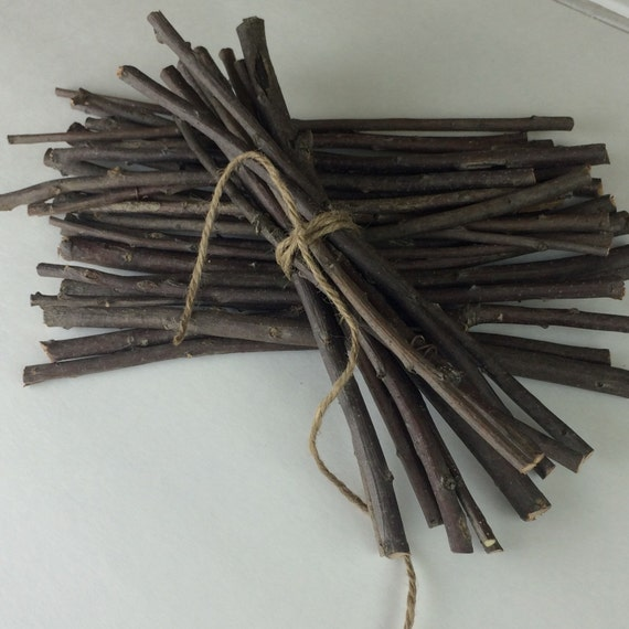 Small oak branches inch twigs hand cut sticks for