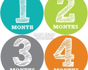 Baby Month Stickers, Monthly Baby Stickers, Bodysuit Stickers, Monthly Milestone Stickers, Baby Monthly Stickers, Baby Belly Stickers, Boys