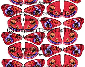 Butterfly and fairy wings, printable wings