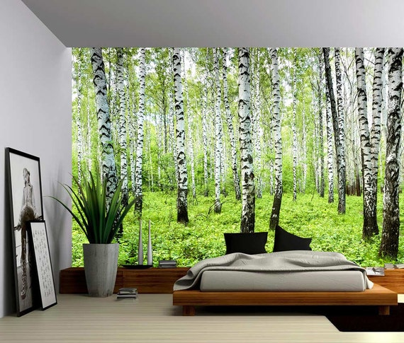 Birch tree forest large wall mural self adhesive vinyl for Birch tree forest wall mural
