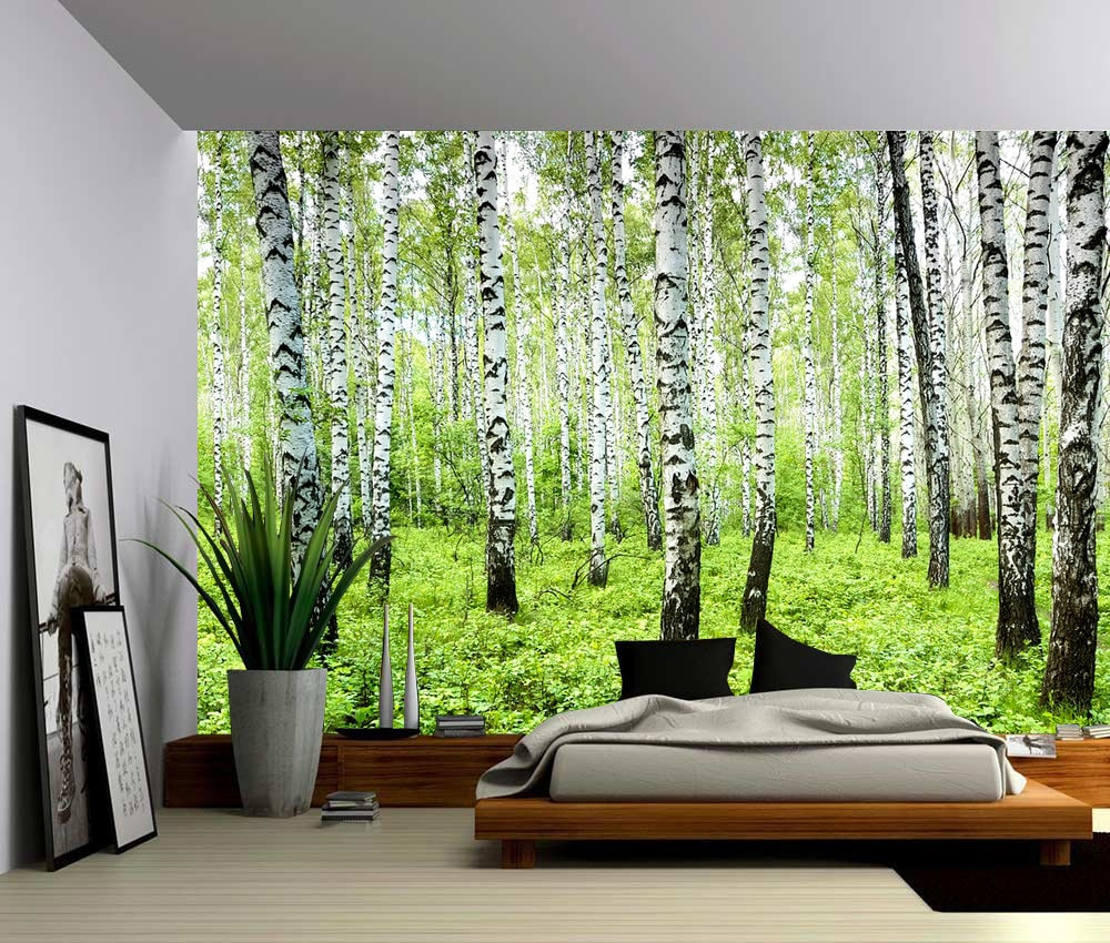 Birch tree forest large wall mural self adhesive vinyl for Birch wall mural