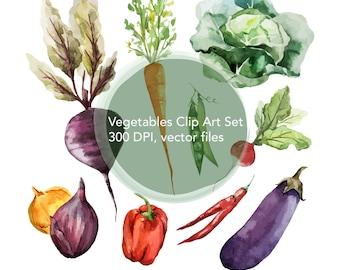 Vegetables Clip Art Set-carrot clip art, onion clip art, pepper clip art, radish clip art, lettuce clip art, eggplant clip art