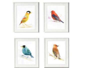 watercolor bird painting set, set of 4 wall art, watercolor painting print