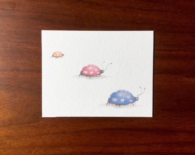 Ladybug Postcards multipack post cards letter card mailing postal holiday travel notecard notes logo free bugs lady bug insect