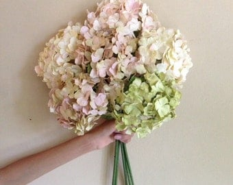 Handmade Paper Hydrangea 6 pcs. in Cream Pink And Green.