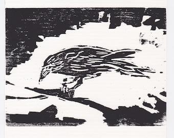 The clever raven-twig-nature-woodcut-print-Woodcut-Moku hanga-Print Graphics-limited edition-original Woodblock print
