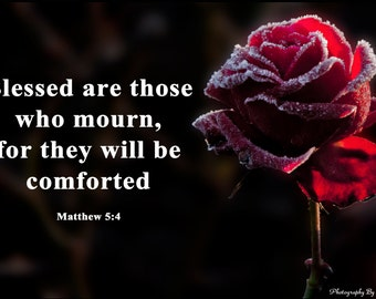 Blessed Are Those Who Mourn Red Rose Photo Memorial Gift Christian Bible Verse Photography Heaven Peace Comfort