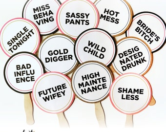 Bachelorette Party Photo Booth Props Set of 12