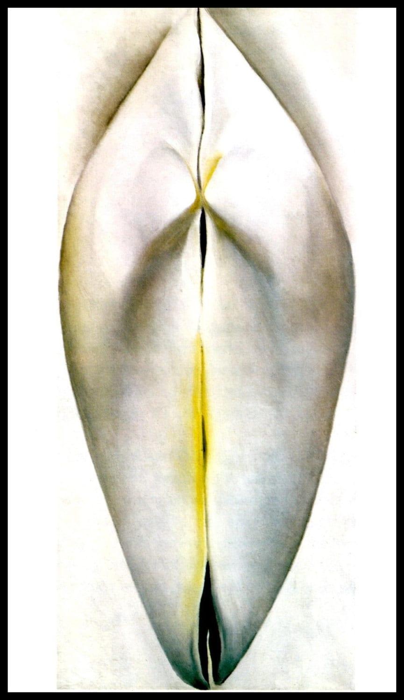 1926 georgia o u0027keeffe print closed clam shell original