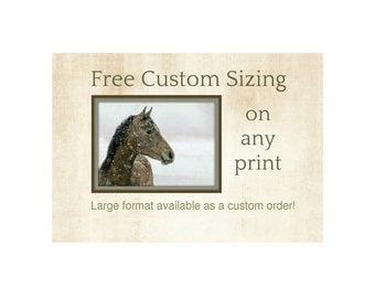Free Custom Sizing ~ Any Printed Image ~ Any Image Offered Here Printed At Any Size (Even Larger Than Indicated) Shipped for Free in the USA