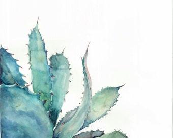 Aloe plant - Art Print