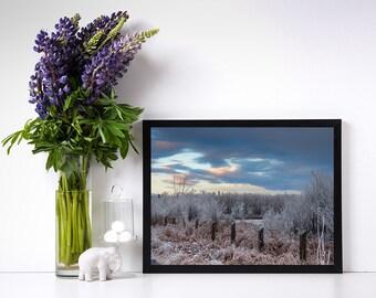 Fine art winter landscape photography print, winter frost, printable, digital download, digital print