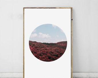 Landscape Photography, Nature Art, Landscape Print, Field Art, Flower Photography, Printable Art, Wall Decor Modern Photography Summer Decor