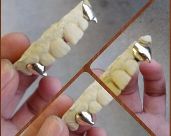 Top or bottom extended fangs in 10k solid gold