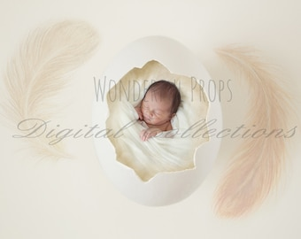 Digital Newborn Photography Egg Prop Backdrop - Collection of 9 Pictures- Single, Twins & Triplets