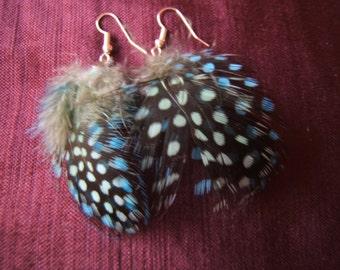Cute bright feather earrings