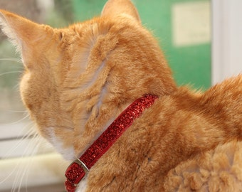 Glitter Glamour Cat Collars