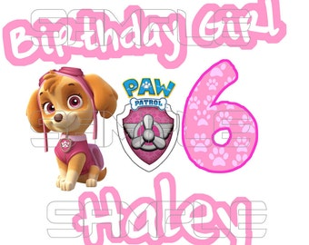 Paw Patrol Skye Birthday Girl Iron On Transfer Digital