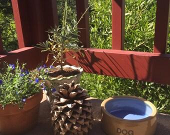 """Stoneware """"Dog"""" Bowl"""