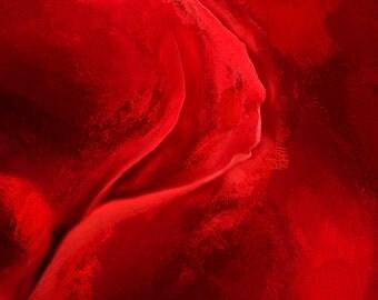Unfurling Rose #3