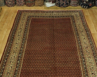 All Over Pattern Traditional Botemir Persian Wool Oriental Area Rug Carpet 8X11