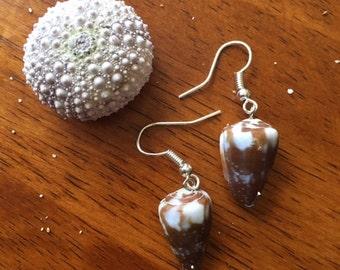 rat cone shell earrings
