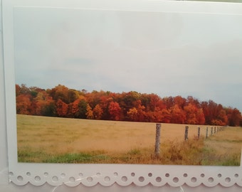 Autumn Field Fence Line