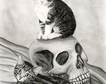Witch's Cat Art Tabby Kittens Drawing Cats Vampire Skull Cat Drawing Gothic Fantasy Cat Art Print 8x10 Cat Lovers Art