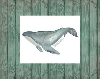 Humpback Whale Ocean Watercolor Illustration Home Decor Fine Art 11x14 Print