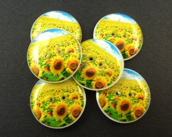"6  Sunflower Buttons.  Bright Yellow Sunflower and Sky Sewing Buttons.  3/4"" or 20 mm Round.  Handmade By Me. Washer and Dryer Safe."
