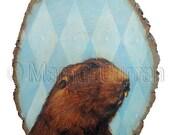 Big-headed Molerat postcard 6-pack