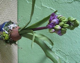 Spring Flowers, Rustic Decor, Flowering Spring Bulb, Spring Planter, Flower Arrangement, Spring Garden, Faux Hyacinth Bulb