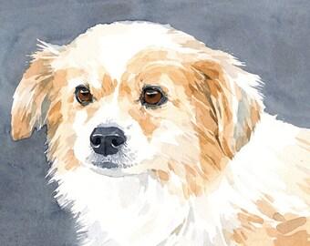 Custom White Dog Pet Portrait Watercolor Painting